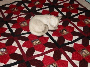 La nuit, tous les chats sont gris... IMG_63761-300x225